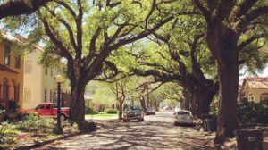 Non touristy attractions in New Orleans